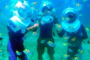 GOING TO BALI? Walk on the Sea Floor! Experience 30-Minutes of Underwater Seawalking in Bali for Just $51! Valued at $85. Includes Hotel Transfer